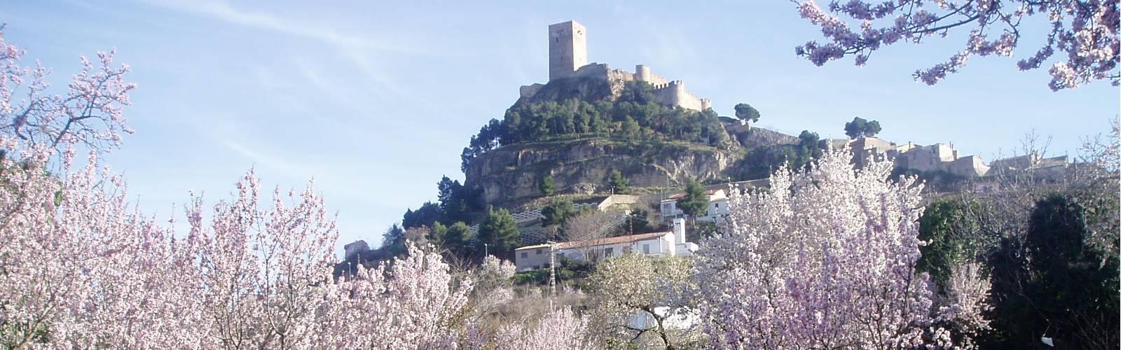 Turismo Biar. Cultura, naturaleza y aventura en Biar.