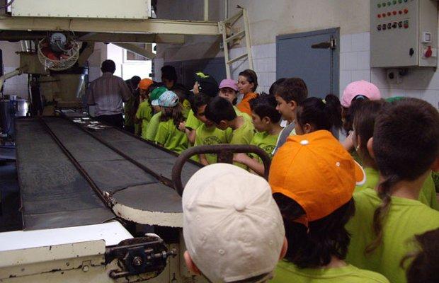Actividades Escolares - Excursiones de 1 día